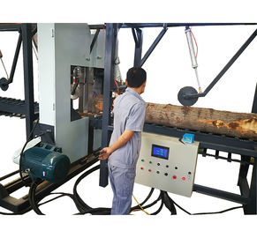Twin Vertical Band Saw Log Edges Cutting Sawmill,Multisaw Edge Cutting Saw